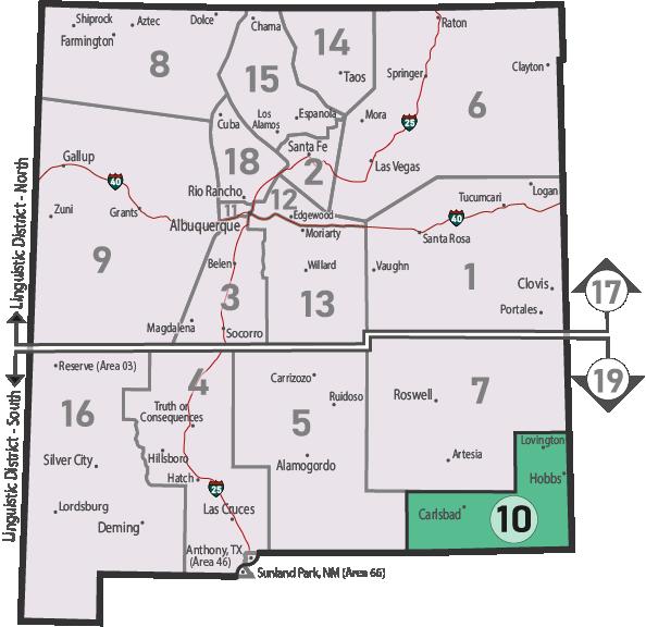 NM Area 46 District 10 Service