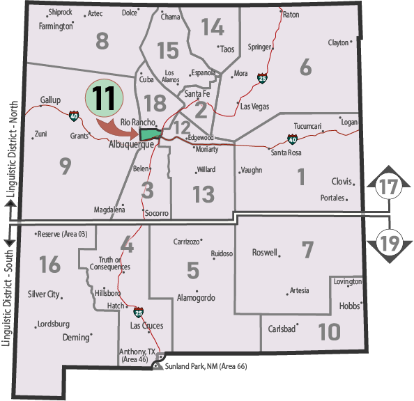 NM Area 46 District 11 Service