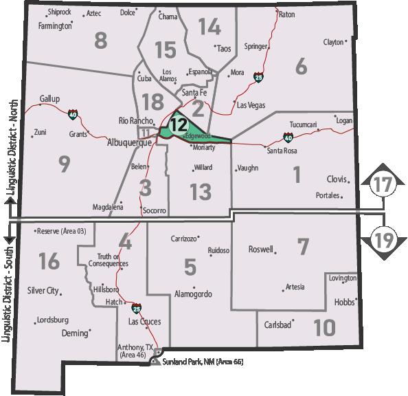 NM Area 46 District 12 Service