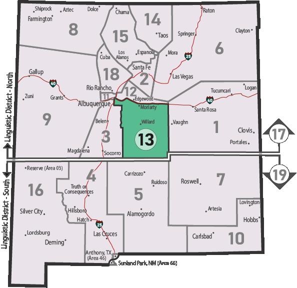 NM Area 46 District 13 Service
