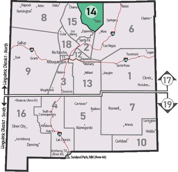 NM Area 46 District 14 Service