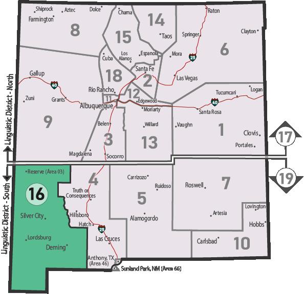 NM Area 46 District 16 Service