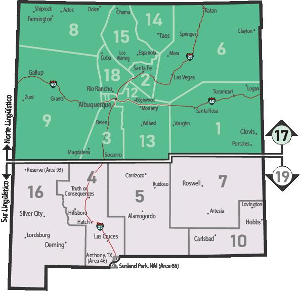 NM Area 46 District 17 Service