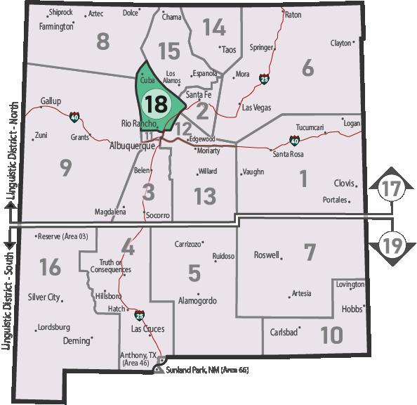 NM Area 46 District 18 Service