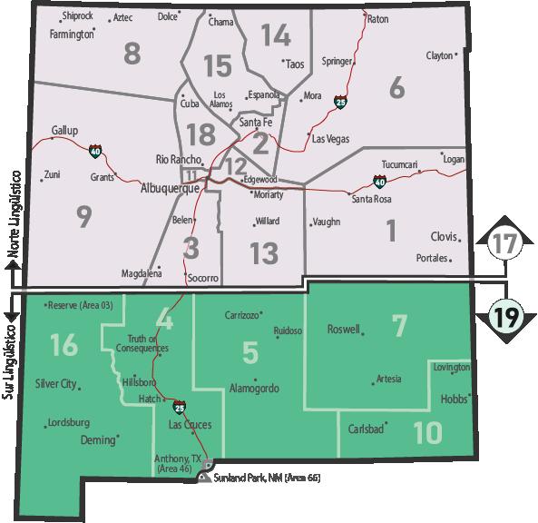 NM Area 46 District 19 Service