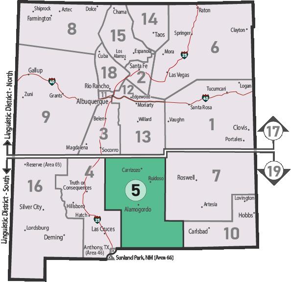 NM Area 46 District 5 Service