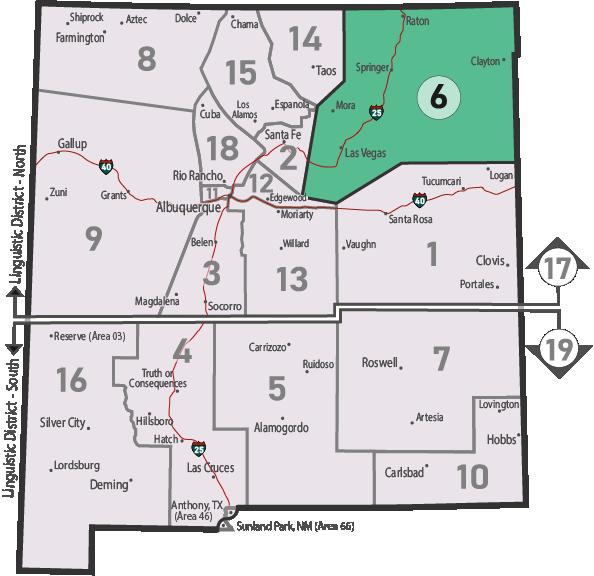 NM Area 46 District 6 Service