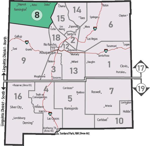 NM Area 46 District 8 Service