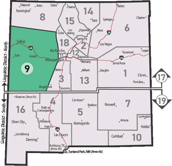 NM Area 46 District 9 Service